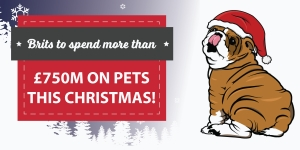Brits To Spend More Than £750m On Pets This Christmas