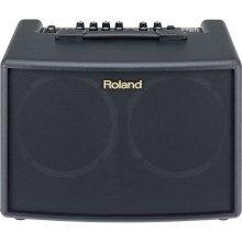Roland AC-60 Stereo 30 Watt Acoustic Chorus Guitar Amplifier