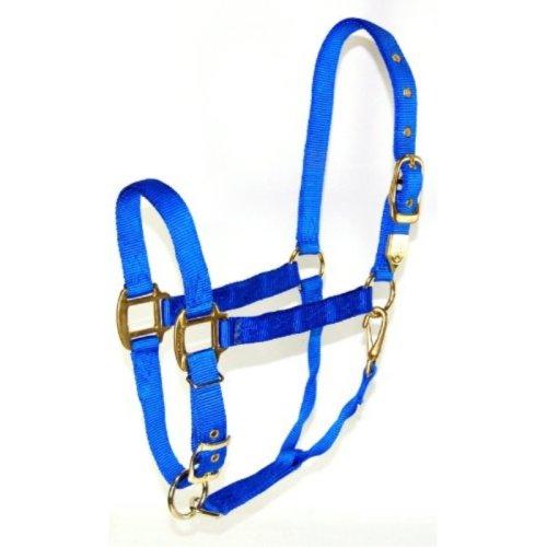 Hamilton 1-Inch Nylon Halter with Adjustable Chin, Blue - Draft Horse Size