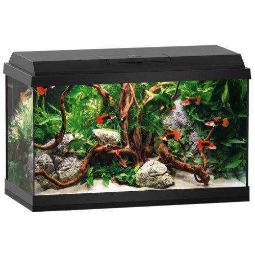 60L LED Aquarium Starter Set
