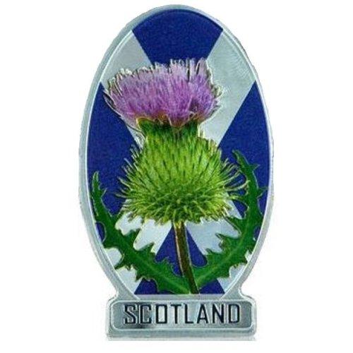 """Résultat de recherche d'images pour """"flower scotland"""""""