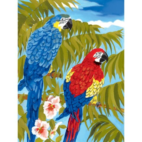 """Junior Small Paint By Number Kit 8.75""""X11.75""""-Parrots"""