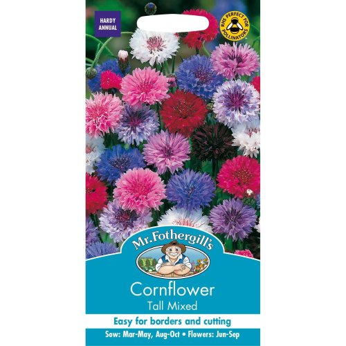 Mr Fothergills - Pictorial Packet - Flower - Cornflower Tall Mixed - 500 Seeds