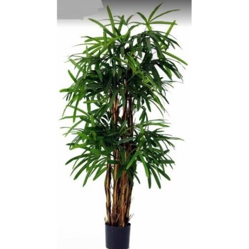 Artificial Lady Palm Tree