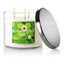 Bath and Body Works Eucalyptus Mint 14.5 Oz Candles