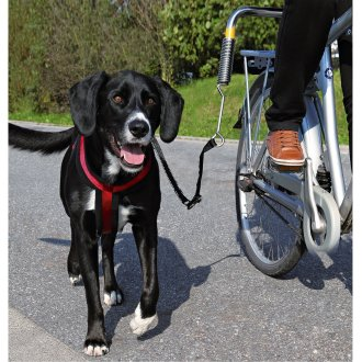 Trixie Biker - Set For Large Dogs