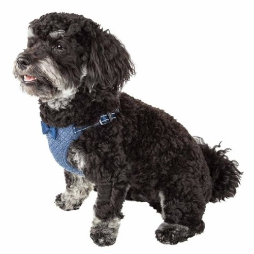 Pet Life HA60BLXS Flam-Bowyant Mesh Reversible & Breathable Adjustable Dog Harness with Designer Bowtie, Navy - Extra Small