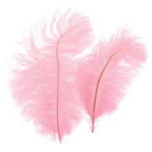 Ostrich Feathers 2/Pkg-Light Pink