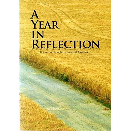 A Year in Reflection: Pictures and Thoughts