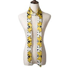 2 PCS Elegant Silk Scarf Neckerchief Silks And Satins Scarves Narrow-band Waistband G