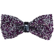 Purple Crystals Party Bow with Centre Buckle and Clear Stone