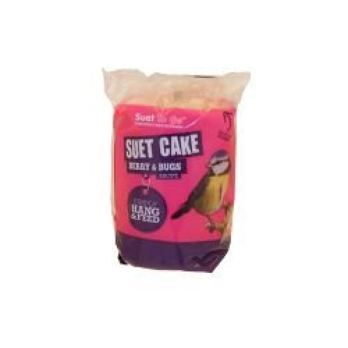Suet To Go Berry and Bugs Hanging Cake, 8 pack