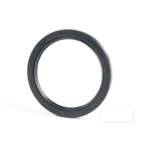5x18x10mm Oil Seal Nitrile Double Lip With Spring 5 Pack