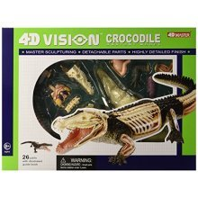 Famemaster 4D Vision Crocodile Anatomy Model