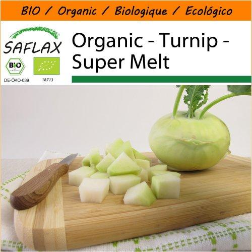 SAFLAX Garden in the Bag - Organic - Turnip - Super Melt - 20 certified organic seeds  - Brassica