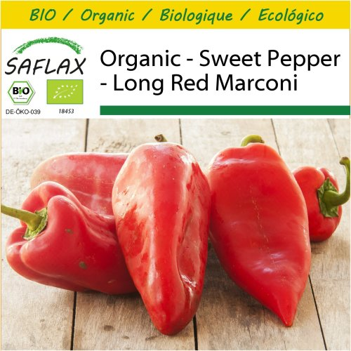 SAFLAX Potting Set - Organic - Sweet Pepper - Long Red Marconi - 20 certified organic seeds  - Capsicum
