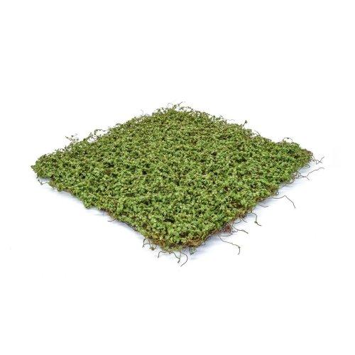 Artificial Topiary Moss/Twig Mat  - 49cm x 49cm, Green