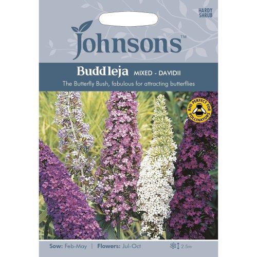 Johnsons Seeds - Pictorial Pack - Flower - Buddleja Mixed - 150 Seeds